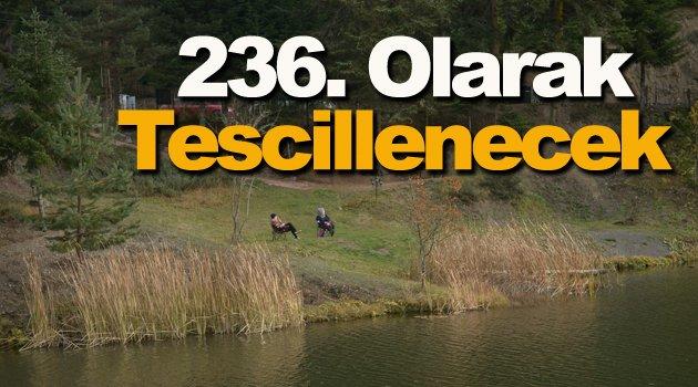 Akgöl,  Türkiye'nin 236. tabiat parkı olacak