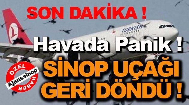 Sinop Uçağı Ani İniş Yaptı !