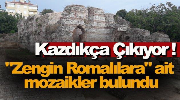 "Sinop'ta ""zengin Romalılara"" ait mozaikler bulundu"