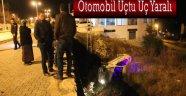 SİNOP'TA OTOMOBİL  UÇTU 3 YARALI