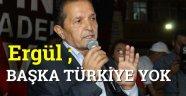 Ergül ; Başka Türkiye Yok