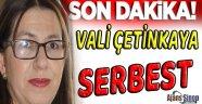 Fetö'den Tutuklu Bulunan Vali Çetinkaya Serbest Bırakıldı