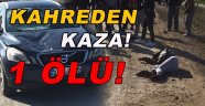 Sinop'ta otomobilin çarptığı yaya öldü
