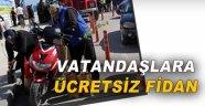 Sinop'ta vatandaşlara fidan dağıtıldı