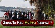 Sinop'ta Kaç Mülteci Yaşıyor ?