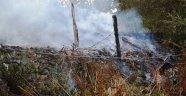 Boyabat'ta Korkutan Yangın