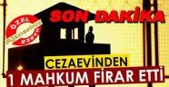 Sinop Cezaevi'nden Firar Etti, Herkes Onu Arıyor!