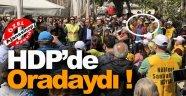 Sinop'ta Gerçekleştirilen Nükleer Etkinliğe HDP'den Destek !