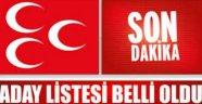 MHP Sinop Adayları Belli Oldu