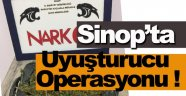 Sinop'ta uyuşturucu operasyonu !