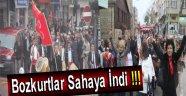 BOZKURTLAR SAHAYA İNDİ !!!