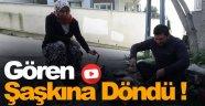 Öldü sanılan meslek Sinop sokaklarında görüldü!
