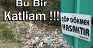 Ayancık'ta Çevre Katliamı !!!