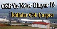 Sinop Organize Sanayi Bölgesinde Neler Oluyor ?