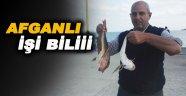 Afganlı iskelede Kırlangıç balığı tuttu