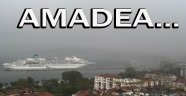 """Amadea"" Sinop'a Demirledi"