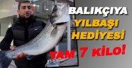 Balıkçılara 7 kilogramlık levrek sürprizi