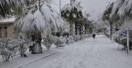 İşte Sinop'un Kar Bilançosu