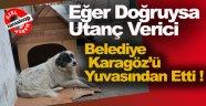 Karagöz'ün Kulübesi Zabıta Ekiplerince Kaldırılması Esnafı Çileden Çıkarttı !