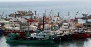 Sinop'ta 350 ticari tekne yeterlilik belgesi alacak