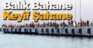Sinop'ta amatör balıkçıların balık tutma merakı