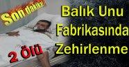 Sinop'ta Balık Unu Fabrikasında Gaz Zehirlenmesi: 2 Ölü