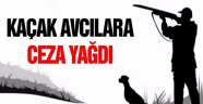 Sinop'ta kaçak avcılara 13 bin lira para cezası