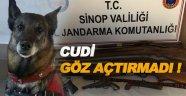 Sinop'ta ruhsatsız silah operasyonu
