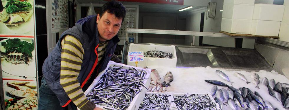 Palamut balıkçıların beklentisini karşılamadı