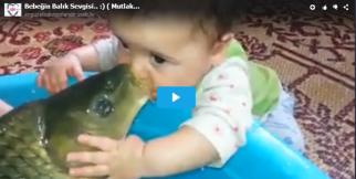 Bebeğin Balık ile aşkı
