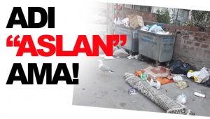 BU NASIL BİR REZALETTİR!