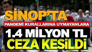 SİNOP'UN PANDEMİ CEZA BİLANÇOSU!