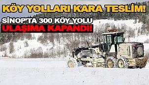 KÖY YOLLARI KARA TESLİM!