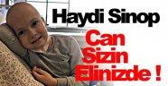 Sinoplu Çınar, Yardımlarınızı Bekliyor !